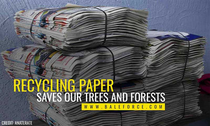 Recycling paper saves our trees and forests
