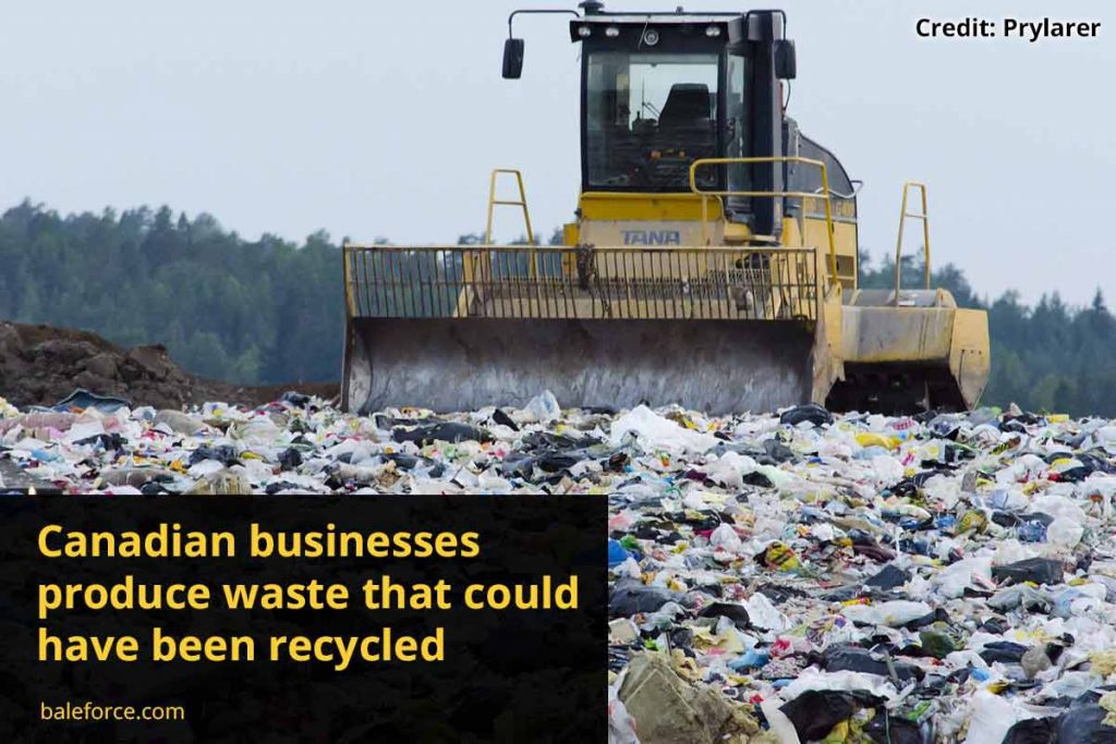 Canadian businesses produce waste that could have been recycled