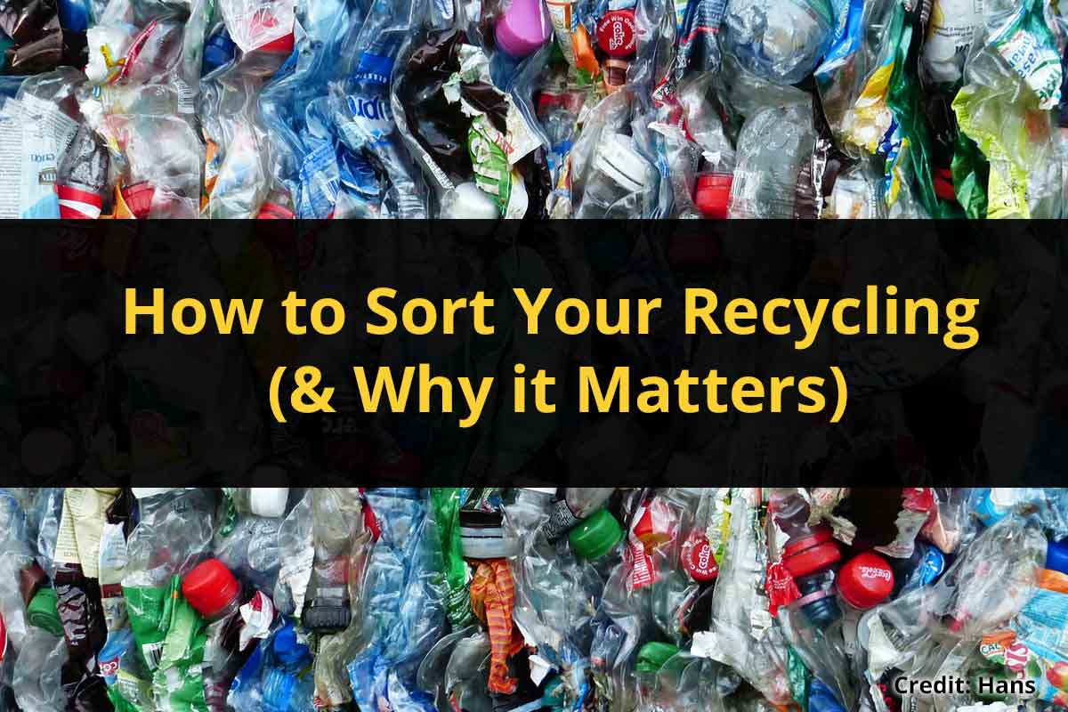 How to Sort Your Recycling (& Why it Matters)