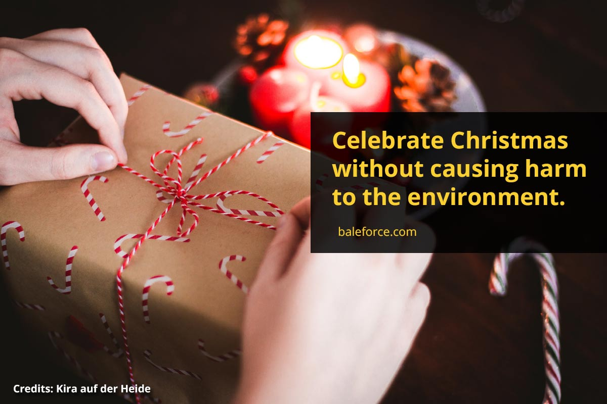 Celebrate Christmas without causing harm to the environment.