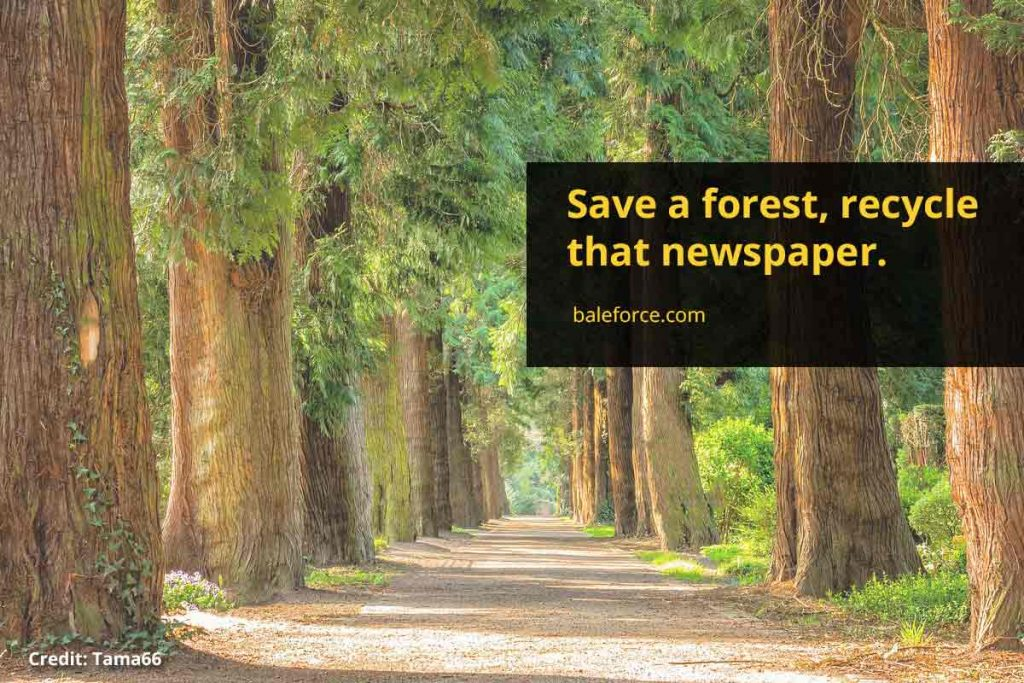 Save a forest, recycle that newspaper.