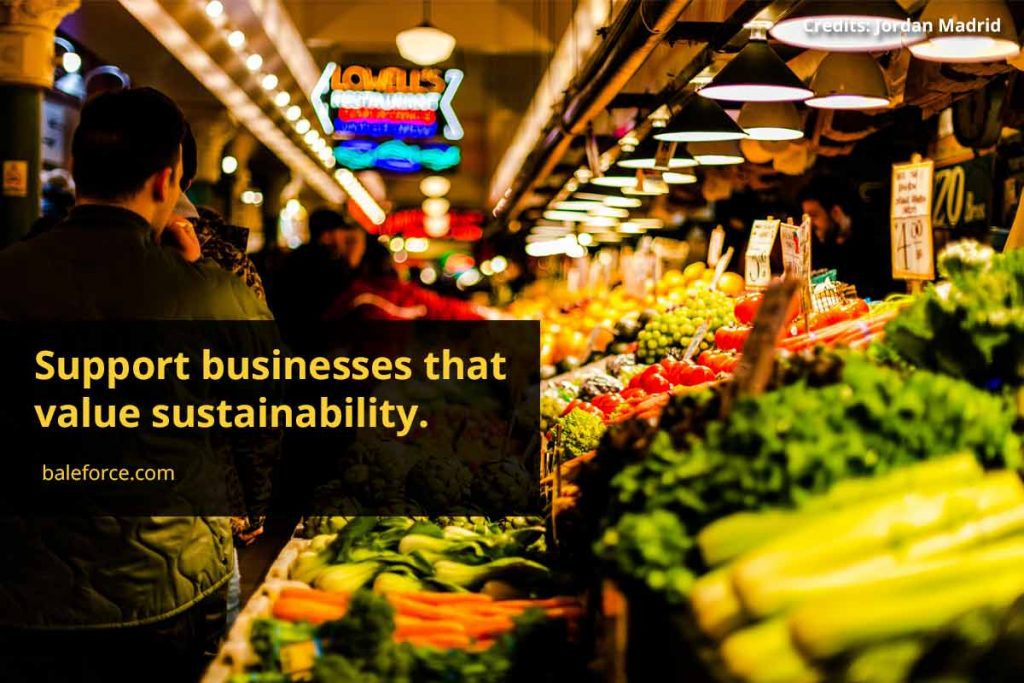 Support businesses that value sustainability.