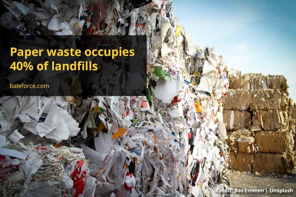 Paper Waste: Why Does It Matter and How to Manage It?