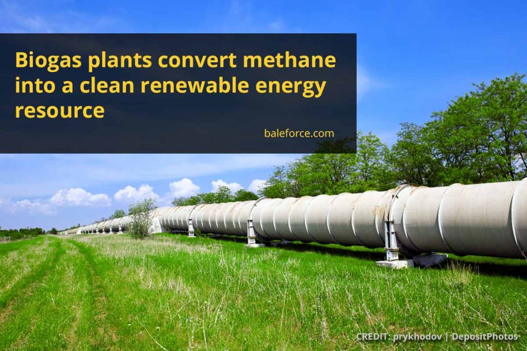 Biogas plants convert methane into a clean renewable energy resource